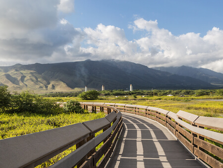 Things to do in Maalaea
