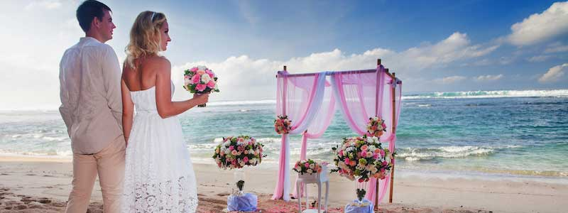 Honolulu Wedding Shuttles