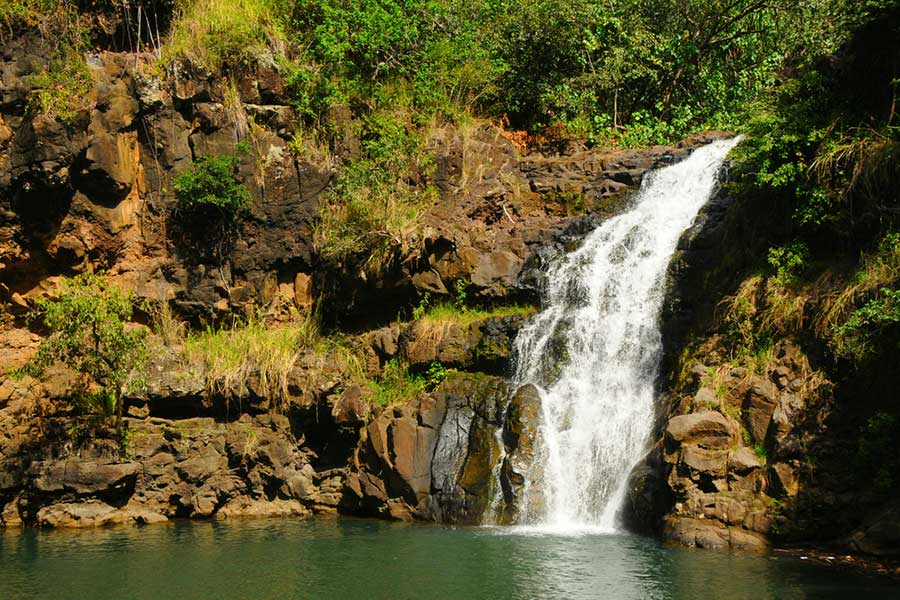 Kauai Tours - Waimea Canyon Tour