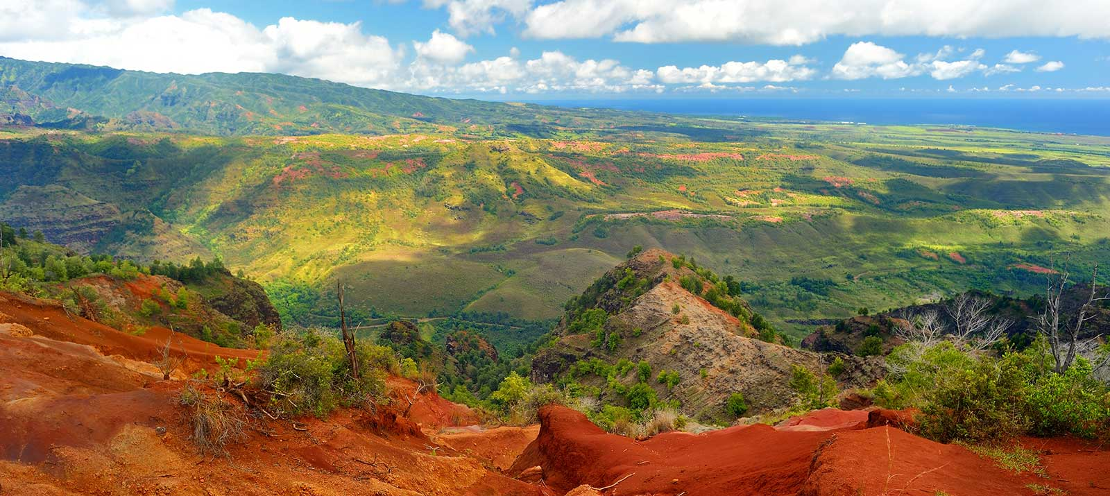 Waimea Canyon Half Day Eco Fun - Kauai Tours   SpeediShuttle